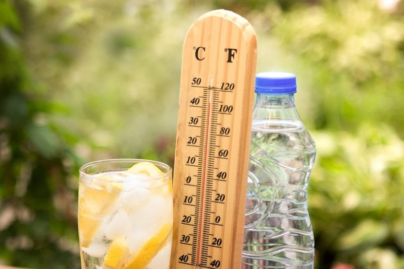 Lemonade, a thermometer showing the summer heat, and a water bottle stand next to each other outside in Springfield, Oregon.