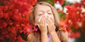 Say Goodbye to Allergies